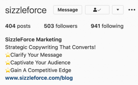 Screenshot of SizzleForce's social media bio for Instagram.